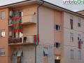 Ternana bandiere bandiera pre Avellino34343