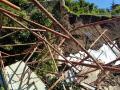 Crollo-muro-giardino-pensile-palazzo-Bufalini-Spoleto-8-luglio-2017-7