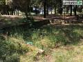 Collerolletta-area-verde-parco54