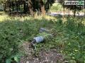 Collerolletta-area-verde-parcoc
