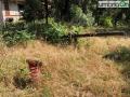Collerolletta-area-verde-parcodfdf454