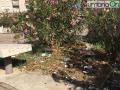 piazza meridiana terni borgo rivo degrado-0808-0001
