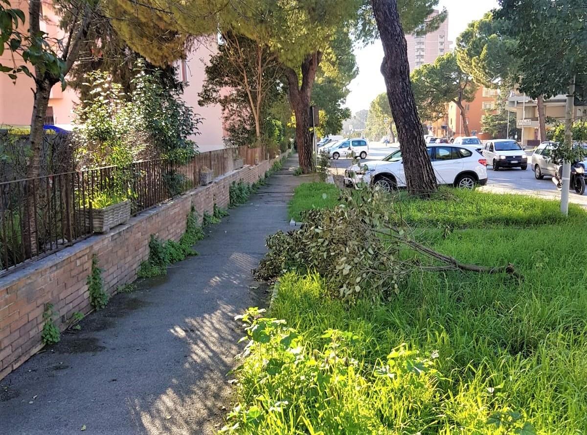 Degrado quartiere Italia, Terni - febbraio 2020 (4)
