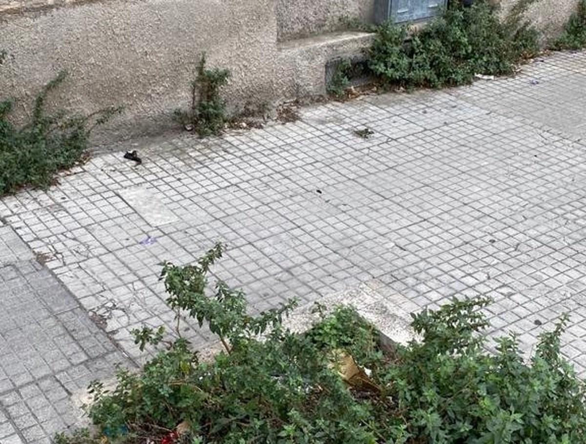 Degrado via Tre Monumenti, Terni - 18 agosto 2020 (7)