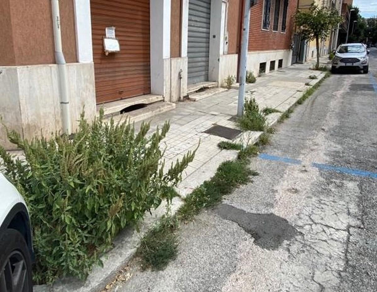 Degrado via Tre Monumenti, Terni - 18 agosto 2020 (9)