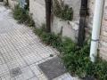 Degrado via Tre Monumenti, Terni - 18 agosto 2020 (2)