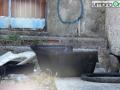 Ex Sim Città Salute Terni45656 gatto rifiuti degrado