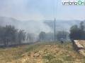 colle-delloro-incendio-Terni333