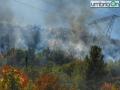 Incendio-boschivo-Lattanzi-2-settembre-Papignosd23