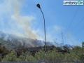 Incendio-Boschivo-Papigno-Monte-Argento-56565dfd