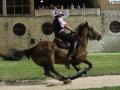 Narni corsa anello rivincita (Mirimao) (48)