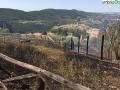 narni incendio 25 agosto (10)