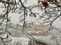cecalocco-neve-5-gennaio