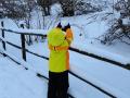 polino-neve-5-gennaio343