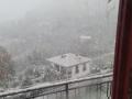 torreorsina-neve-5-gennaio34