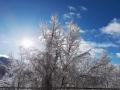 Foto Melissa Rosati Pian di Chiavano (Cascia) neve - gennaio 2021 (1)