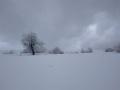 Foto Melissa Rosati Pian di Chiavano (Cascia) neve - gennaio 2021 (4)