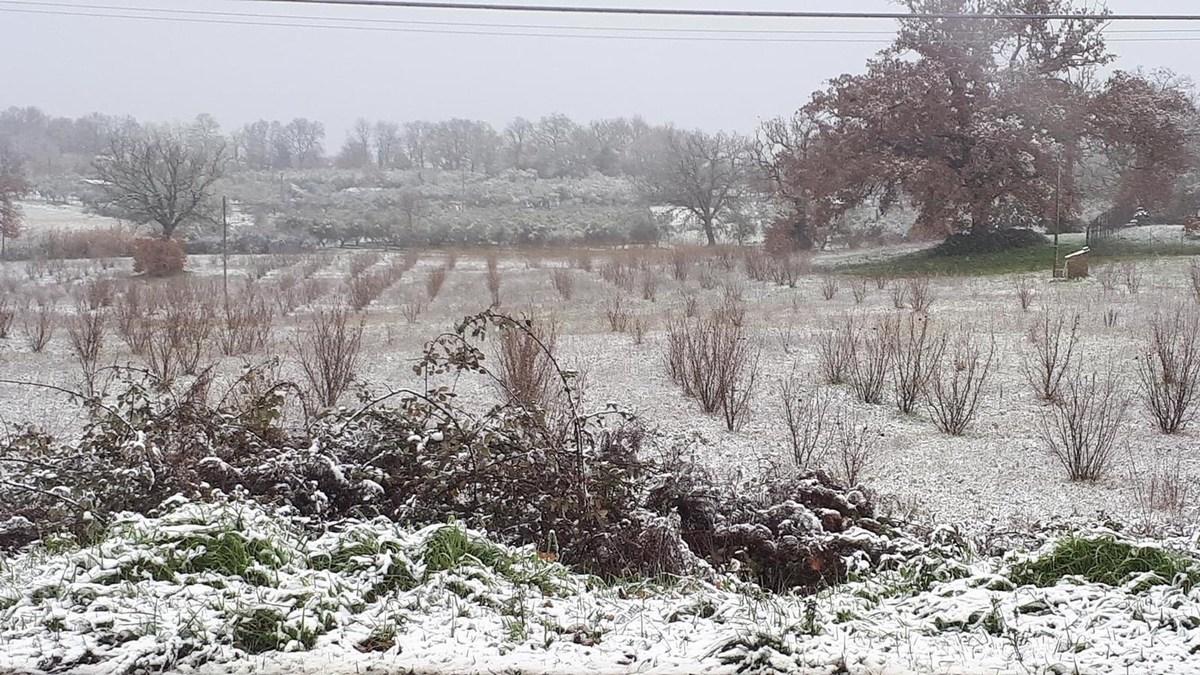 Neve Ternano Burian - 13 febbraio 2021