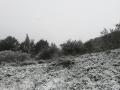 Neve-Lugnano-in-Teverina-Burian-13-febbraio-2021