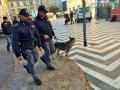 Operazione-antidroga-Gotham-cani-cane-piazza-Solferino-polizia-18-dicembre-2018-12