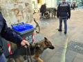 Operazione-antidroga-Gotham-cani-cane-piazza-Solferino-polizia-18-dicembre-2018-8