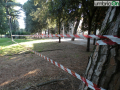 abbattimento alberi albero Lungonera Terni giardini 25 aprile (FILEminimizer)