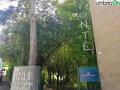 san gemini parco fonte (12)