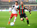 Ternana Perugia derby han signorini (1)