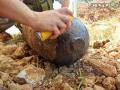 Bomba a Terni Cesi, despolettamento artificieri - 29 luglio 2018 (12)