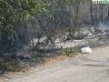 terni incendio campomaggiore cesi (12)