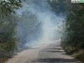 terni incendio campomaggiore cesi (14)