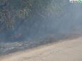 terni incendio campomaggiore cesi (15)