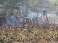 terni incendio campomaggiore cesi (18)