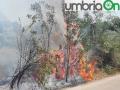 terni incendio campomaggiore cesi (7)