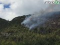 incendio-fuoco-fiamme-Terni-strada-mandorla-32322-e1502456388570