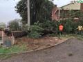 terni-maltempo-vento-strada-di-carone-elettricità-albero