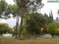 terni-stadio-albero-caduto-rami-1