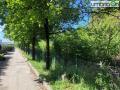 Via-Vulcano-Mi-Rifiuto-pulizia343434