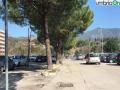 Terni usl2 parcheggio alberi radici buche (5)