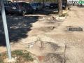 Terni usl2 parcheggio alberi radici buche (6)