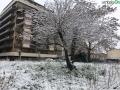 terni neve 26 febbraio 2018 (29)