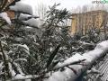 terni neve 26 febbraio 2018 (32)