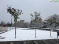 terni neve 26 febbraio 2018 (41)