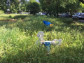Rifiuti, degrado, sporcizia giardini pubblici via Monterotondo, Terni - 6 maggio 2017 (6)