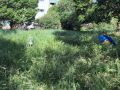 Rifiuti, degrado, sporcizia giardini pubblici via Monterotondo, Terni - 6 maggio 2017 (8)