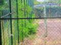 Rifiuti, degrado, sporcizia parco comunale San Carlo, Terni - 6 maggio 2017 (2)