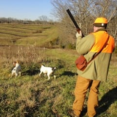 Armi da fuoco nella caccia: c'è il seminario