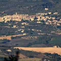 Montecchio, 30 furti sul territorio nel 2014