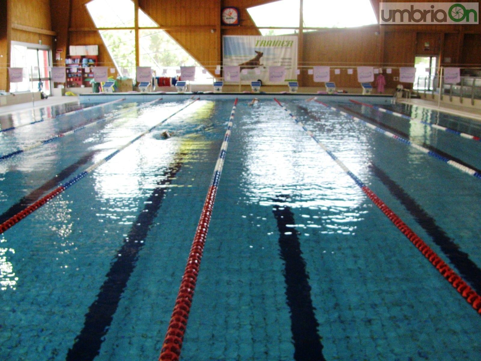 Nuoto sincro a terni ecco i tricolori masters umbriaon - Piscine dello stadio ...