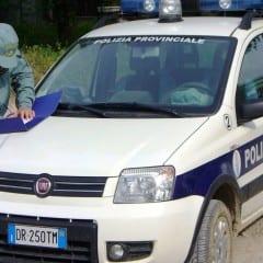 Polizia provinciale, bilancio 2017 a Terni